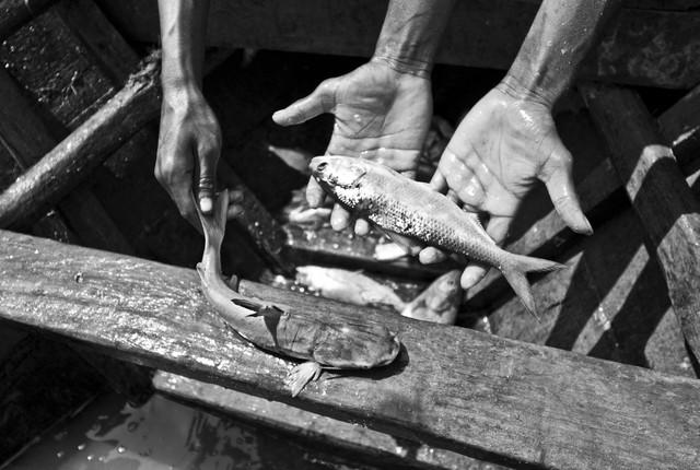 Fishermen with catch - fotokunst von Jakob Berr