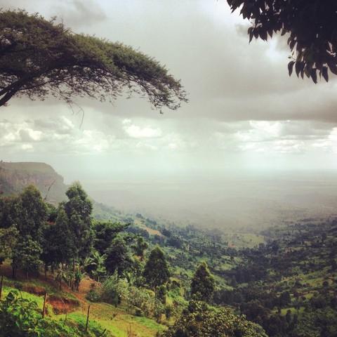 Mount Elgon - fotokunst von Delia Kämmerer