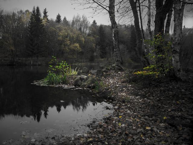 Am See - fotokunst von Michaela Ertelt
