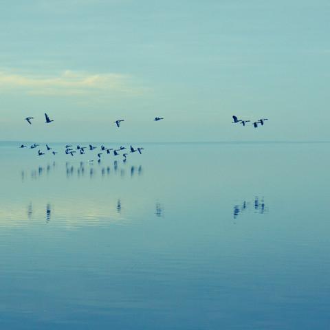 Gruppendynamik - fotokunst von Martin Bliedung