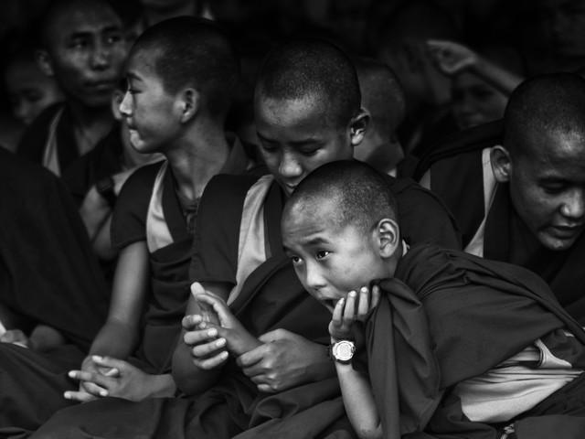buddhist monks contemplating - fotokunst von Jagdev Singh