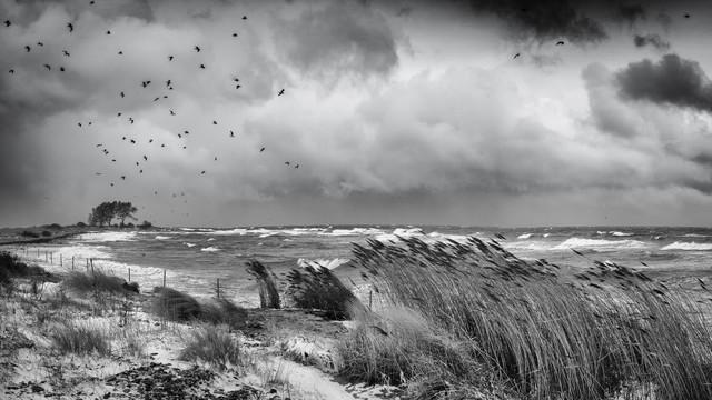 Winterstorm Baltic Sea, Wintersturm an der Ostsee - fotokunst von Dennis Wehrmann