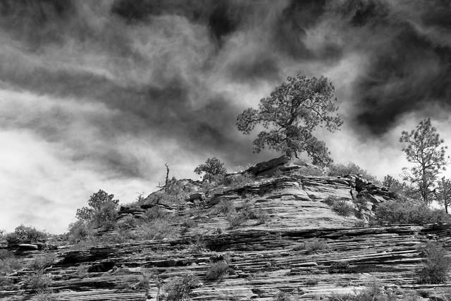 Angel's Landing - Zion National Park (USA) - fotokunst von Jörg Faißt