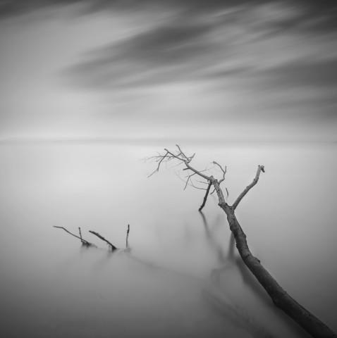 Divided - fotokunst von Daniel Tjongari