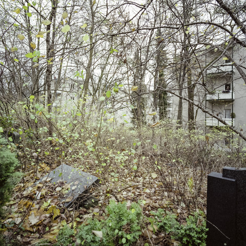 Friedhof Bergstraße, Berlin-Steglitz - fotokunst von Jost Galle