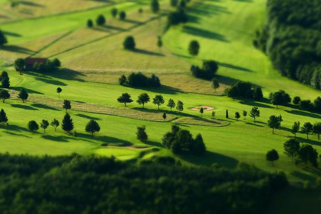 trees - fotokunst von Jochen Fischer