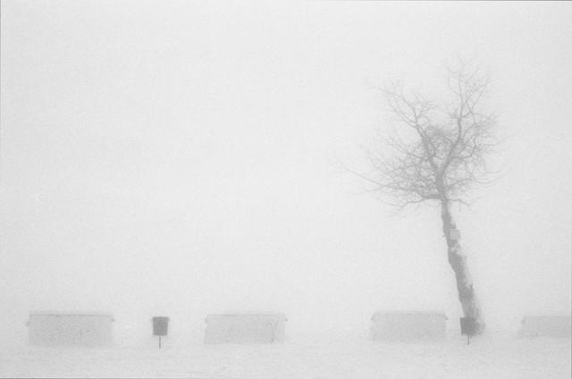 avantgarden II - fotokunst von Olah Laszlo-Tibor