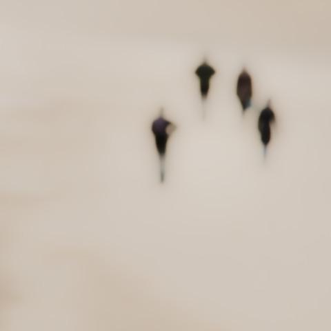 Strandläufer - fotokunst von Gregor Ingenhoven