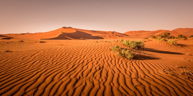 Dune in the Desert - fotokunst von Michael Stein