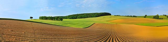 Im Feld - fotokunst von Hans Altenkirch