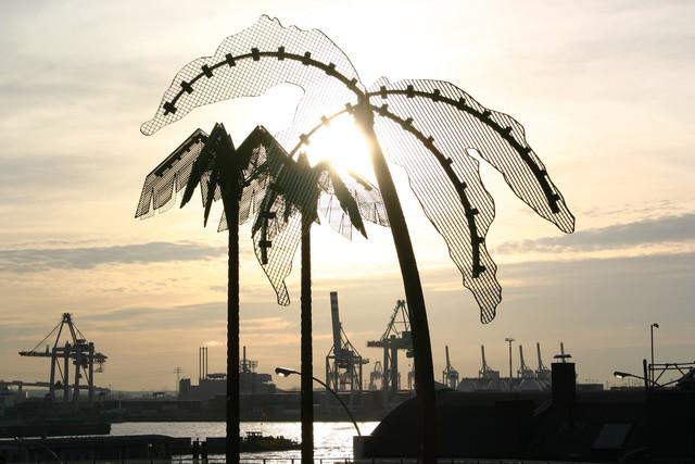 Hamburger Palmen (Deutschland) - fotokunst von Franz Walter