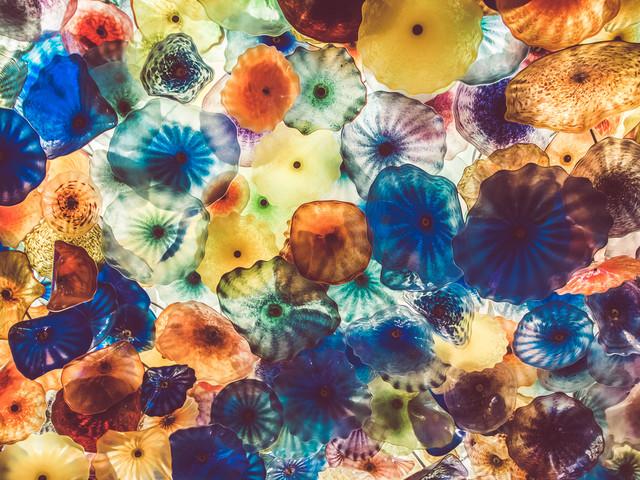 Jellyfish - fotokunst von Martin Röhr