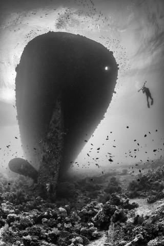 Kingston wreck - fotokunst von Christian Schlamann