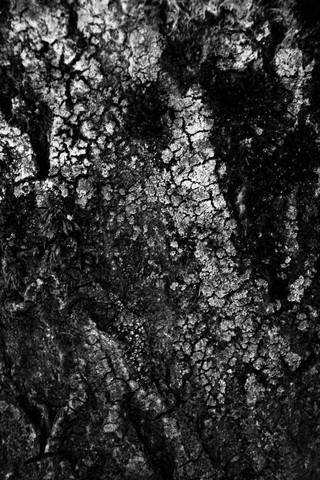 untitled - fotokunst von Nikki Gijselhart