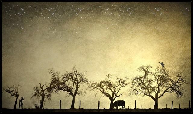 at the end of a very hard day.. - fotokunst von Frank Wöllnitz