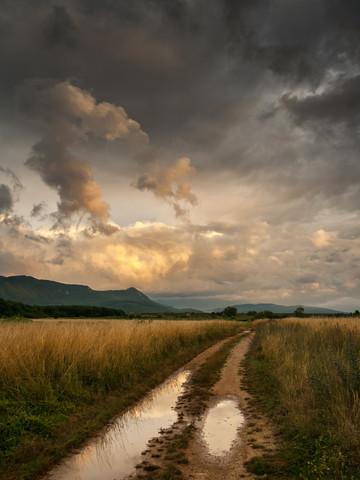 After rain - fotokunst von Zoran Radaković