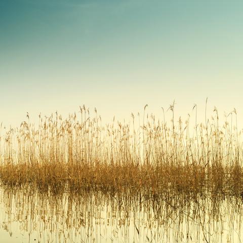 Müggelsee - fotokunst von Holger Nimtz