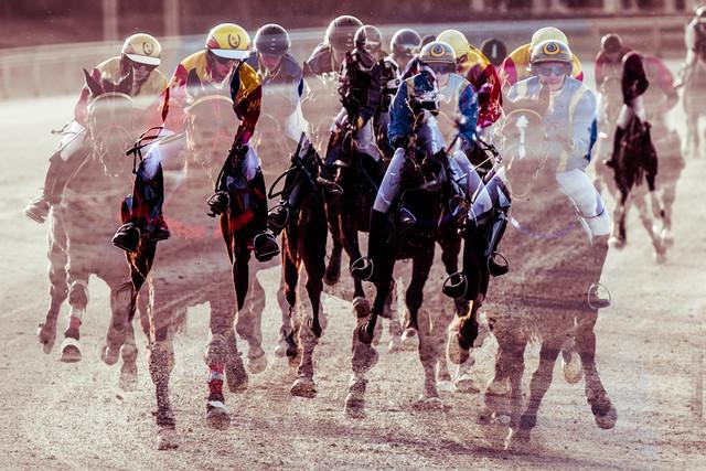 hoppa pferdi - fotokunst von Michael Schaidler