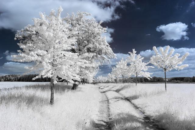 Uckermark - fotokunst von Holger Nimtz