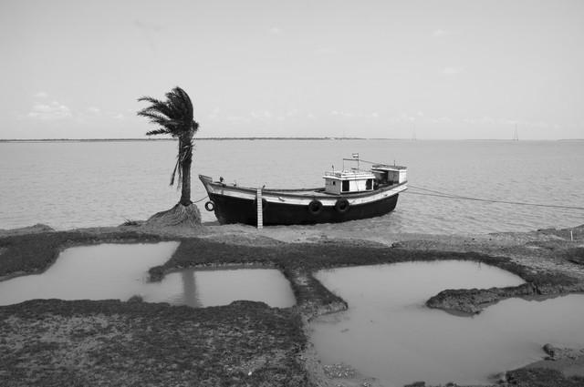 The sinking island. - fotokunst von Sankar Sarkar