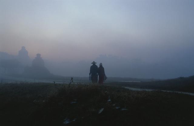 Im Morgennebel - fotokunst von Martin Seeliger