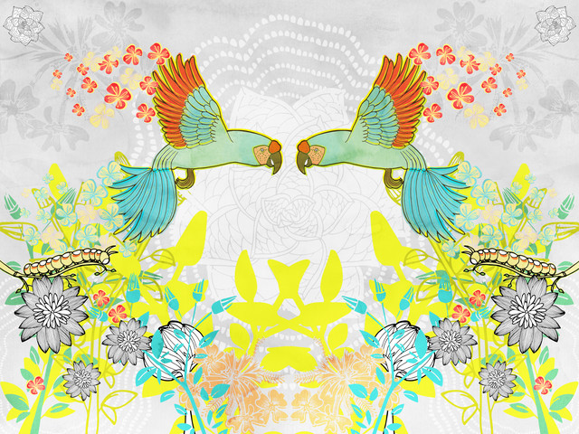 Macaws - fotokunst von Catalina Villegas