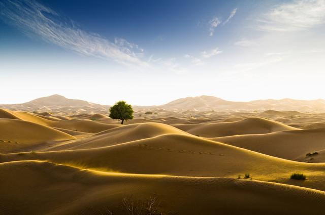 Rub al-Chali - fotokunst von Daniel Schoenen