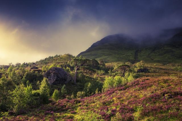 Highland Fairy Tale X - fotokunst von Philip Gunkel