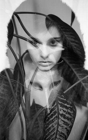 Metamorphosis - Kristina - fotokunst von Madelaine Grambow