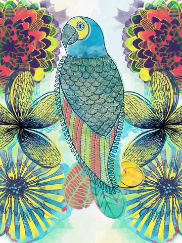 Papagei - fotokunst von Catalina Villegas