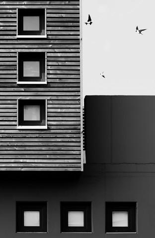 drei - fotokunst von Manuela Deigert