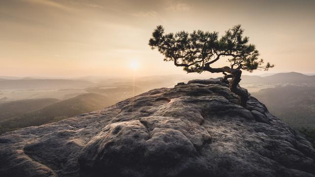 Heimat der Sonne Sächsische Schweiz Lilienstein - fotokunst von Ronny Behnert