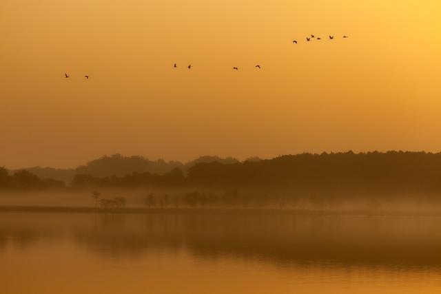 Morgenstimmung am Rederanger See - fotokunst von Angelika Stern