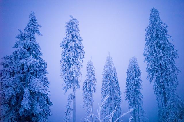 Eiswelt I - fotokunst von Jakob Berr