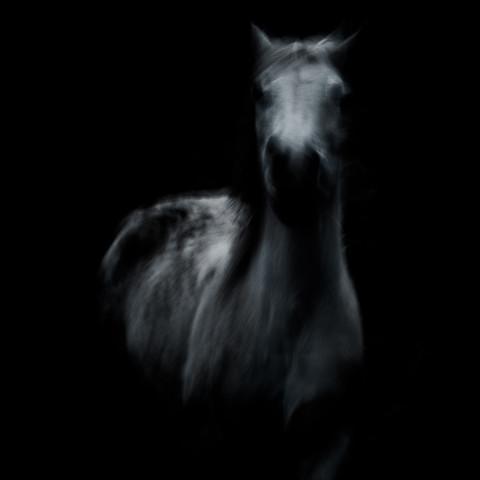impression - fotokunst von Raffaella Castagnoli