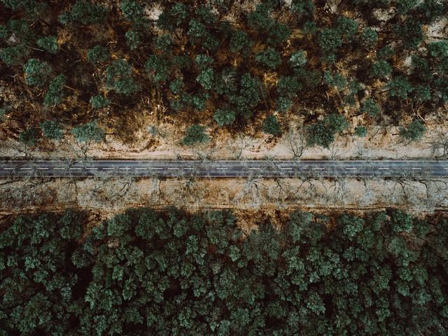 Road in Brandenburg - fotokunst von Steven Ritzer