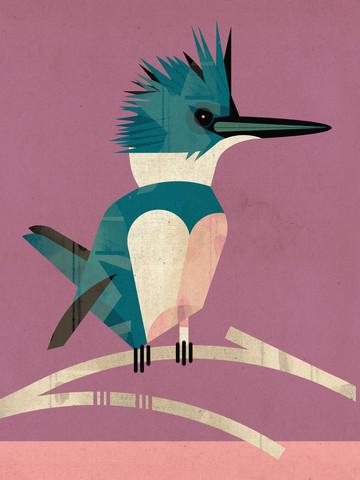 Eisvogel - fotokunst von Dieter Braun