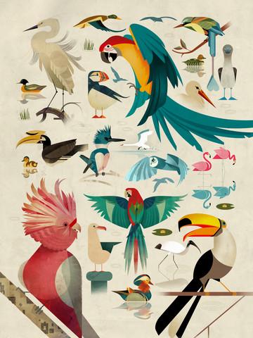 Vögel - fotokunst von Dieter Braun