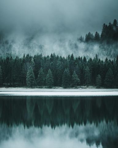 Forest Reflection - fotokunst von Luca Jaenichen