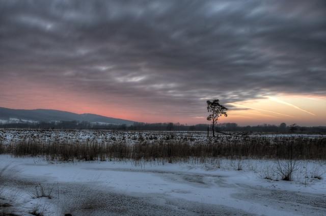 Mystischer Sonnenuntergang im Grossen Torfmoor - fotokunst von Sascha Wichert