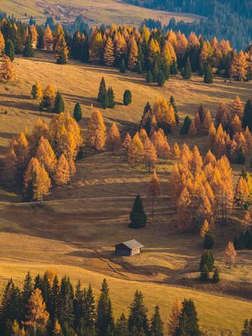 Lost Cabin - fotokunst von Gergo Kazsimer