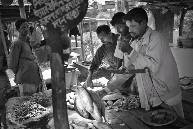Merchants weigh fish at the market, Bangaldesh - fotokunst von Jakob Berr