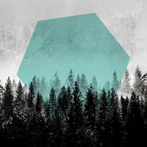 Woods 3 - fotokunst von Mareike Böhmer