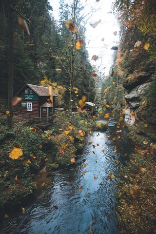 Blättertanz - fotokunst von Johannes Hulsch