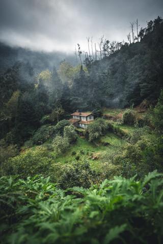 Hütte im Jungle - fotokunst von Johannes Hulsch