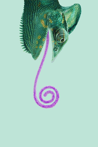 Candy Chameleon - fotokunst von Jonas Loose