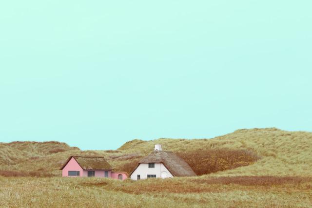 Klitrosen - fotokunst von Holger Nimtz
