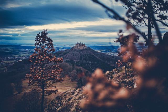 Burg Hohenzollern zwischen jungen Eichen - fotokunst von Franz Sussbauer