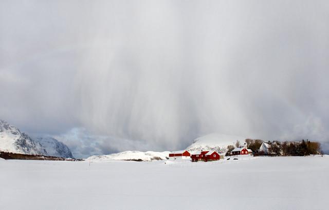 Schneeregen! - fotokunst von Victoria Knobloch