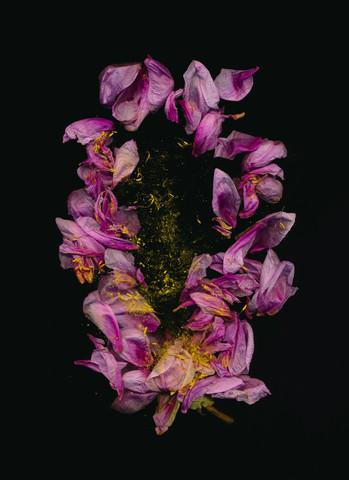 Aria - fotokunst von Ramona Reimann